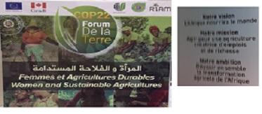 Apres la COP 22